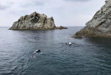 Elba Swim 647: un mare di solidarietà