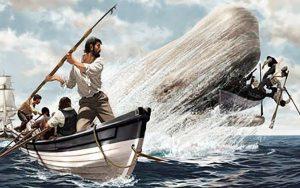 Storie di mare in video